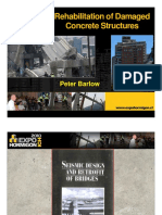 PeteBarlow_Rehabilitation.pdf