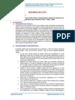 01.- RESUMEN EJECUTIVO - MACO.docx