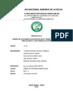 Informe Baño PDF
