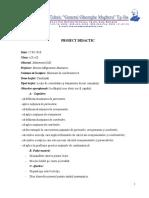 Proiect Didactic x Combinari