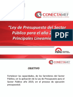 Ley de Presupuesto 2019_30879_Principales Lineamiento DEFINITIVO.pdf