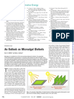 An Outlook on Microalgal Biofuels.pdf