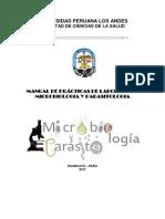 MANUAL MICRO.docx