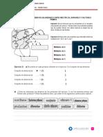 Descubrir Regularidades Entre Multiplos y Divisores y Factores Primos.