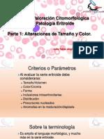 Clase 8 Revision de Lamina Periferica