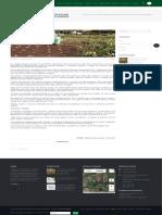Pesquisador cria irrigador solar automático com garrafas usadas - SBEA - ASSOCIAÇÃO BRASILIEIRA DE ENGENHARIA AGRÍCOLA.pdf