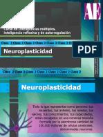 Apunte a - Neuroplasticidad