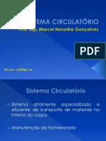 SISTEMA CIRCULATÓRIO1.pptx