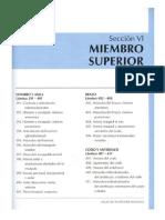 MiSup[3].pdf