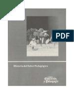 Historia del saber pedagogico