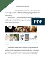 SEGMENTACIÓN DE MERCADO.pdf