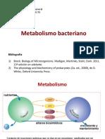 Metabolismo I.pdf