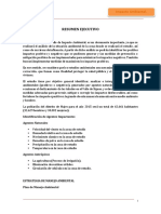 Estudio Ambiental - Canal Madre Alterno.docx