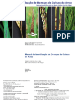 Manual de doenças do arroz.pdf