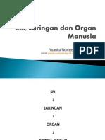 Sel, Jaringan dan Organ Manusia PT 1.pdf