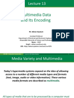 13 Multimedia Data and Its Encoding a Mod