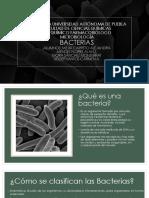 7. Bacterias.pdf