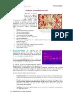 Trabajo de Investigación v - Toxicología