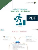 GUIA_OPERADOR.pdf