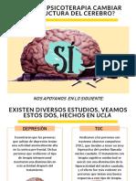 Psicoterapia y Cerebro 3