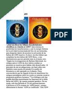 kupdf.net_adn.pdf