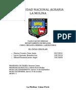 CICLO CELULAR.docx