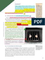 UMA NOVA SOCIEDADE.pdf