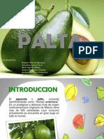 PALTA-1