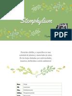 Stem Phylum