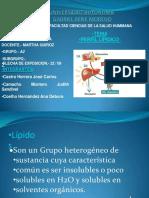 perfillipidicofinal-130205160723-phpapp02