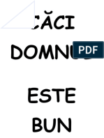 CAI DOMNUL....pdf