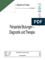 015-063d S2k Peripartale Blutungen Diagnostik Therapie PPH 2017-07