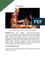Cara Pendekatan Anatomi