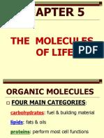 Organic Inorganic