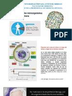 Microbiologia  patogenia