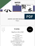 Shui - Water