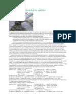 Prepararea betonului la santier.docx