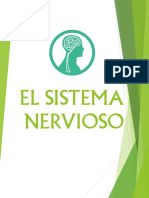 EL SISTEMA NERVIOSO.pdf