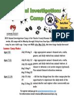2019-summer-camp-landscape