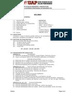 SILABUS ESTATICA UAP.pdf