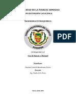 Gas de Síntesis y Producción de Metanol
