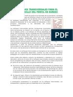 Enfoques Transversales 2019.docx