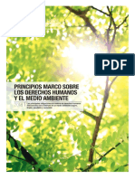 PRINCIPIOS MARCO SOBRE DERECHOS HUMANOS Y MEDIO AMBIENTE