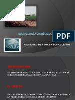 UT12 - Hidrología Agrícola.pdf