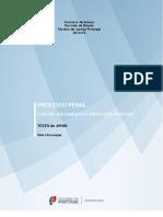 Fase do Julgamento e Processos Especiais.pdf