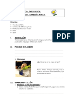 PRACTICA EXPERIMENTAL.docx