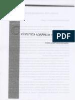 Conflitos agrários no Pará001.pdf