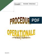 PROCEDURI-OPERAŢIONALE-2013 (1).pdf