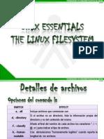 PRESENTACIÓN_UNIX ESSENTIALS_THE LINUX_FILESYSTEM_LARED38110