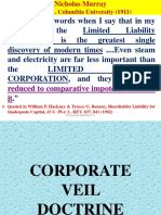 5. Lifting of Corporate Law